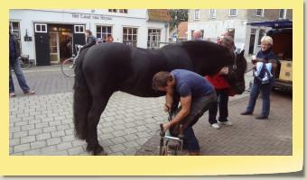 Beslaan van een paard door smid Pepijn